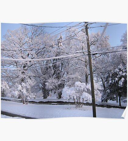 Feb. 19 2012 Snowstorm 85 Poster