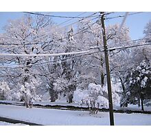 Feb. 19 2012 Snowstorm 85 Photographic Print