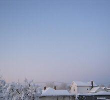 Feb. 19 2012 Snowstorm 86 by dge357