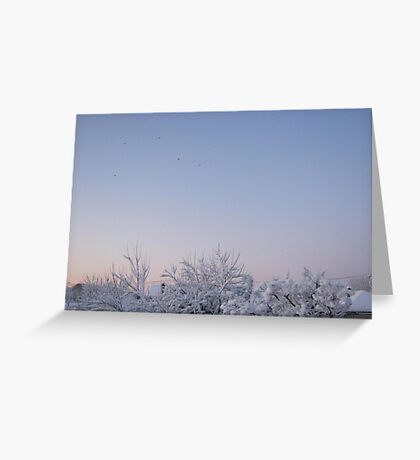 Feb. 19 2012 Snowstorm 87 Greeting Card