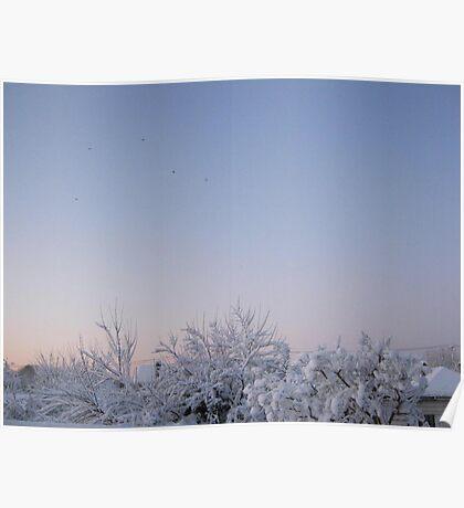 Feb. 19 2012 Snowstorm 87 Poster
