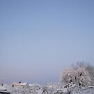Feb. 19 2012 Snowstorm 92 by dge357