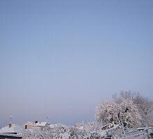 Feb. 19 2012 Snowstorm 92 by dge357