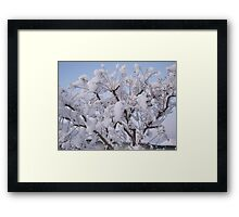 Feb. 19 2012 Snowstorm 93 Framed Print