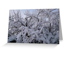 Feb. 19 2012 Snowstorm 95 Greeting Card