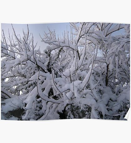 Feb. 19 2012 Snowstorm 95 Poster