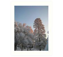 Feb. 19 2012 Snowstorm 98 Art Print