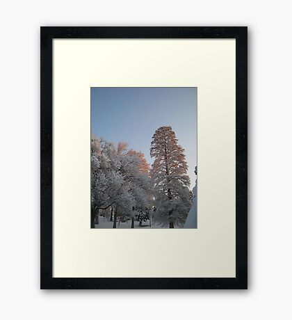 Feb. 19 2012 Snowstorm 98 Framed Print