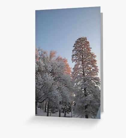 Feb. 19 2012 Snowstorm 98 Greeting Card
