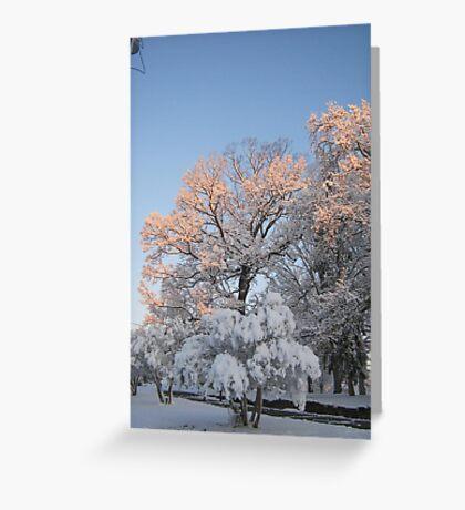 Feb. 19 2012 Snowstorm 99 Greeting Card