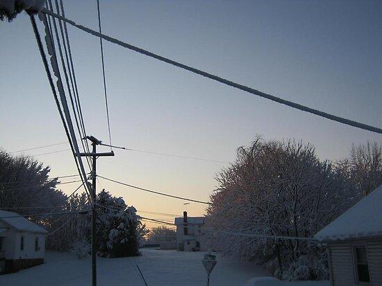 Feb. 19 2012 Snowstorm 100 by dge357