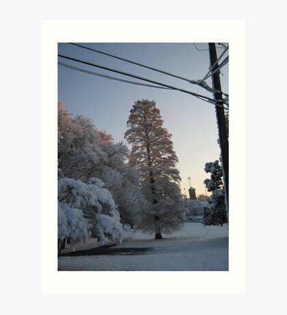 Feb. 19 2012 Snowstorm 102 Art Print