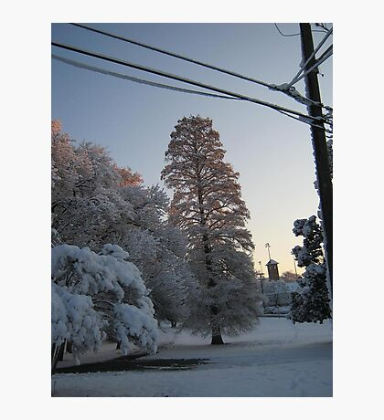 Feb. 19 2012 Snowstorm 102 Photographic Print