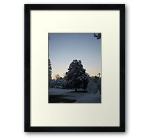 Feb. 19 2012 Snowstorm 103 Framed Print