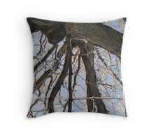 Feb. 19 2012 Snowstorm 104 Throw Pillow