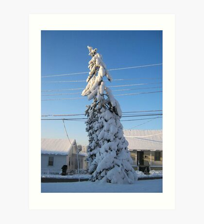 Feb. 19 2012 Snowstorm 109 Art Print