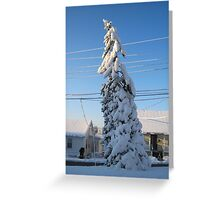 Feb. 19 2012 Snowstorm 109 Greeting Card