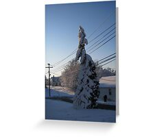 Feb. 19 2012 Snowstorm 112 Greeting Card