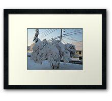 Feb. 19 2012 Snowstorm 113 Framed Print