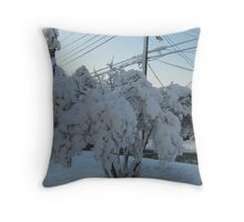 Feb. 19 2012 Snowstorm 113 Throw Pillow