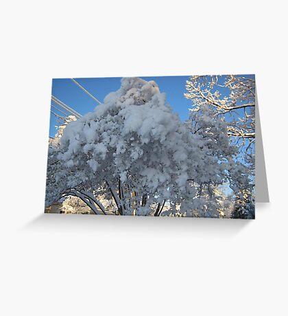 Feb. 19 2012 Snowstorm 114 Greeting Card