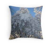 Feb. 19 2012 Snowstorm 114 Throw Pillow
