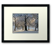 Feb. 19 2012 Snowstorm 117 Framed Print