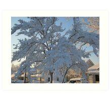 Feb. 19 2012 Snowstorm 119 Art Print