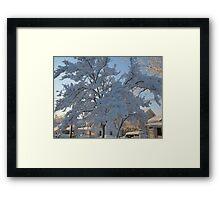 Feb. 19 2012 Snowstorm 119 Framed Print