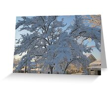 Feb. 19 2012 Snowstorm 119 Greeting Card