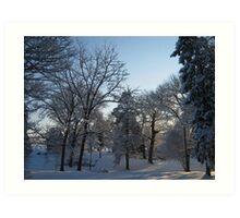 Feb. 19 2012 Snowstorm 121 Art Print