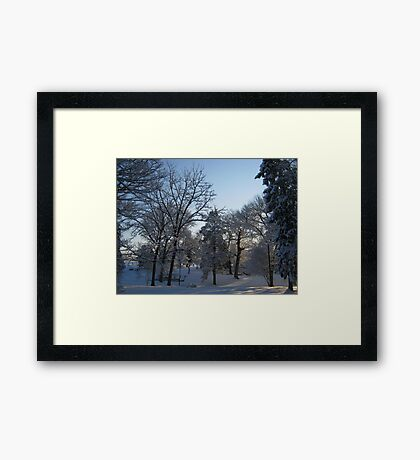 Feb. 19 2012 Snowstorm 121 Framed Print