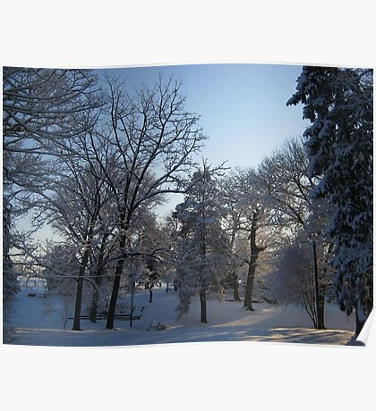 Feb. 19 2012 Snowstorm 121 Poster