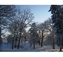 Feb. 19 2012 Snowstorm 121 Photographic Print