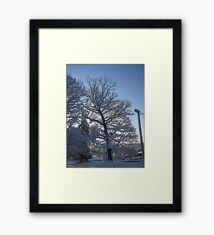 Feb. 19 2012 Snowstorm 122 Framed Print
