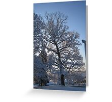 Feb. 19 2012 Snowstorm 122 Greeting Card