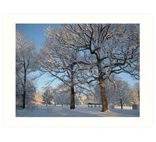 Feb. 19 2012 Snowstorm 127 Art Print
