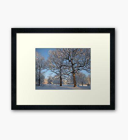 Feb. 19 2012 Snowstorm 127 Framed Print