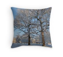Feb. 19 2012 Snowstorm 127 Throw Pillow