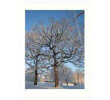 Feb. 19 2012 Snowstorm 128 Art Print