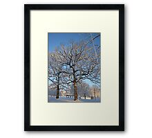 Feb. 19 2012 Snowstorm 128 Framed Print