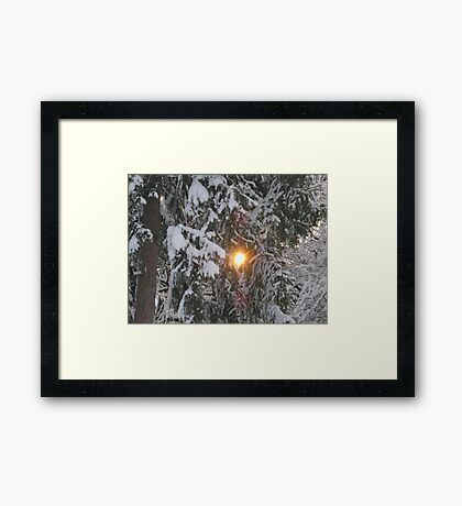 Feb. 19 2012 Snowstorm 129 Framed Print