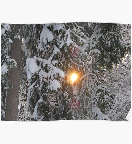 Feb. 19 2012 Snowstorm 129 Poster