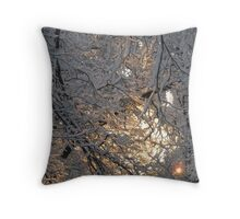 Feb. 19 2012 Snowstorm 131 Throw Pillow