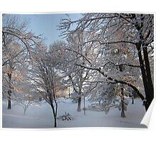 Feb. 19 2012 Snowstorm 134 Poster