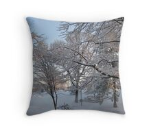 Feb. 19 2012 Snowstorm 134 Throw Pillow
