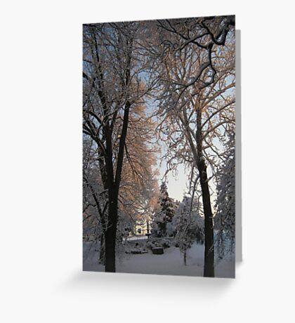 Feb. 19 2012 Snowstorm 135 Greeting Card