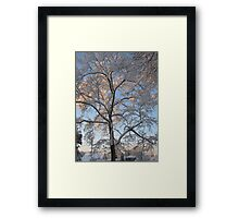 Feb. 19 2012 Snowstorm 136 Framed Print