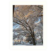 Feb. 19 2012 Snowstorm 137 Art Print