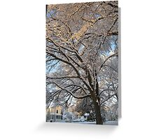 Feb. 19 2012 Snowstorm 137 Greeting Card